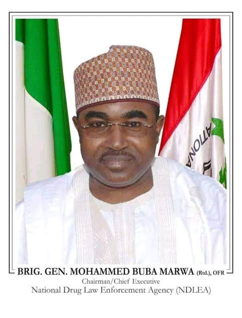 Marwa breaks years of stagnation in NDLEA, promotes 3,506 officers